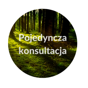 Konsultacja ajurwedyjska online